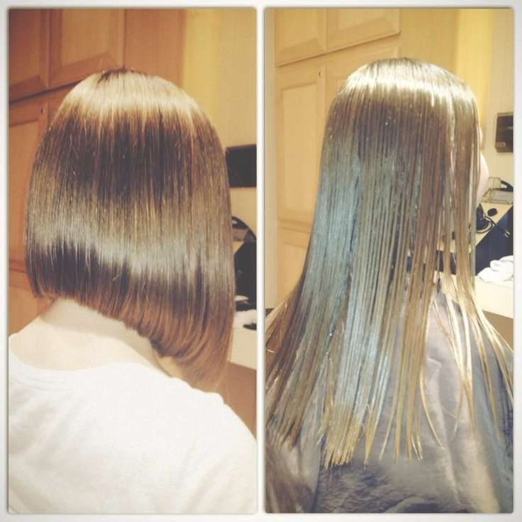 Explore Gallery Of Back View Long Bob Haircuts Showing 13 Of 15 Photos