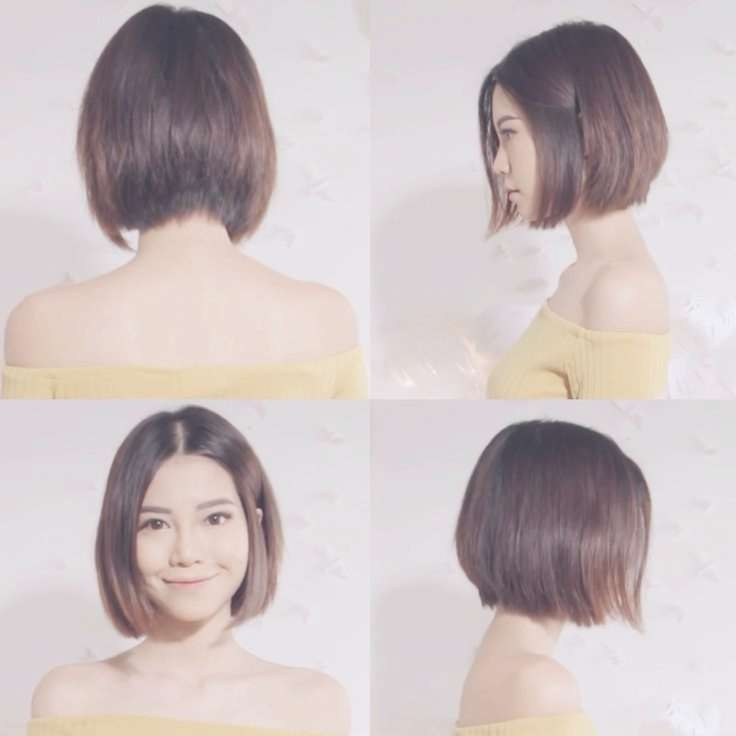 Explore Gallery Of Asian Bob Haircuts Showing 6 Of 15 Photos
