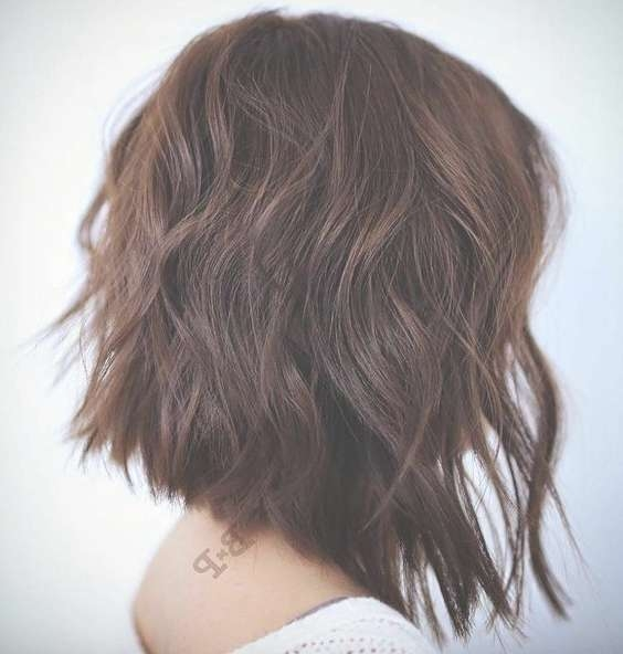Best 25+ Brown Bob Haircut Ideas On Pinterest | Short Medium Intended For Brown Bob Haircuts (View 5 of 15)