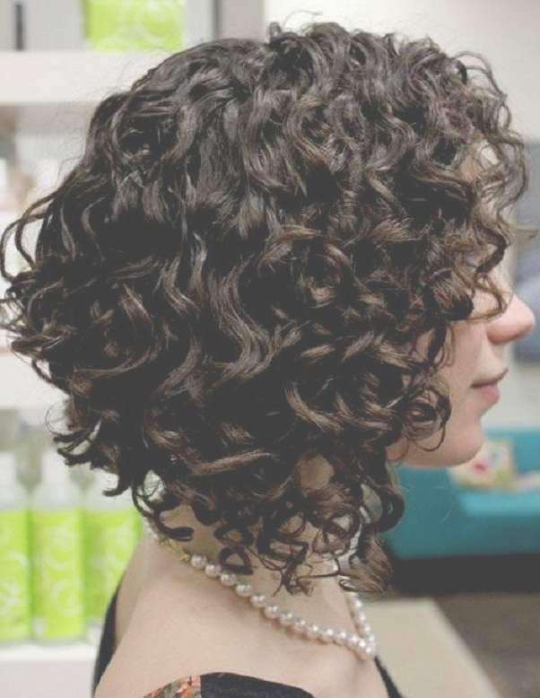 Best 25+ Curly Bob Hairstyles Ideas On Pinterest | Medium Wavy Bob With Layered Bob Haircuts For Curly Hair (View 15 of 15)