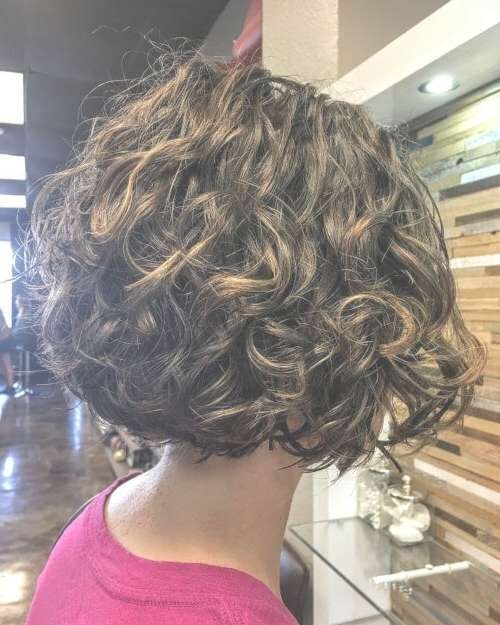 Best 25+ Curly Bob Ideas On Pinterest | Curly Bob Hairstyles In Curly Short Bob Haircuts (View 4 of 15)