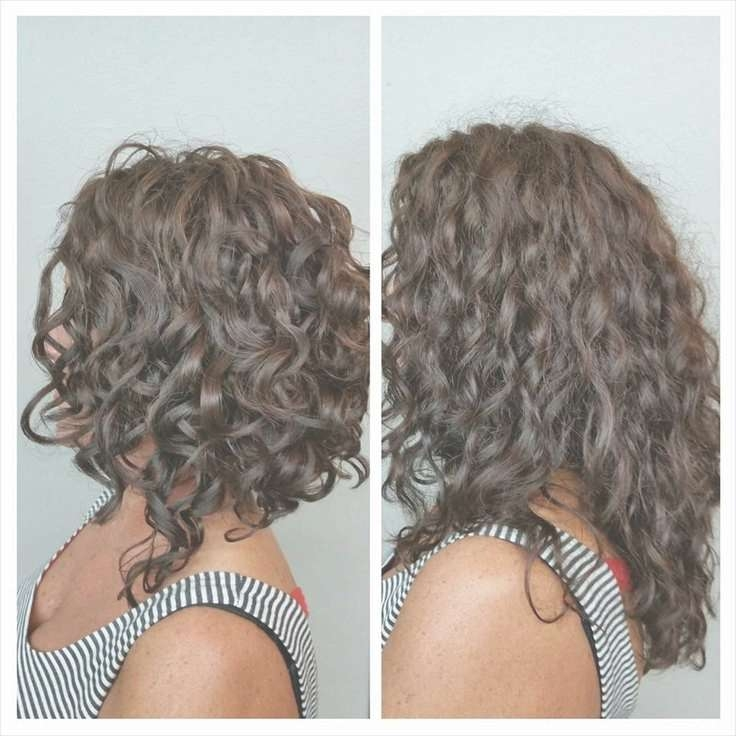 Best 25+ Curly Inverted Bob Ideas On Pinterest   Curled Inverted With Stacked Bob Haircuts For Curly Hair (View 4 of 15)