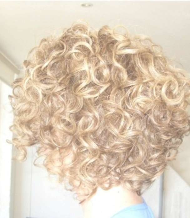 Best 25+ Curly Stacked Bobs Ideas On Pinterest   Short Perm, What For Stacked Bob Haircuts For Curly Hair (View 5 of 15)