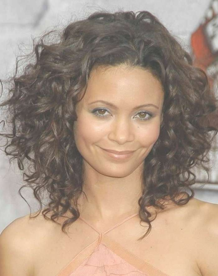 Best 25+ Thick Curly Haircuts Ideas On Pinterest   Curly Medium Within Bob Haircuts For Thick Curly Hair (View 9 of 15)