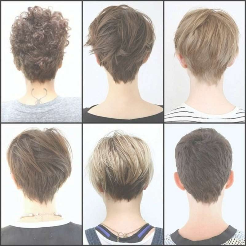 Bob Haircuts Front And Back View – Anh Co Tran Bob Short Bob With Regard To Bob Haircuts Back And Front View (View 13 of 15)