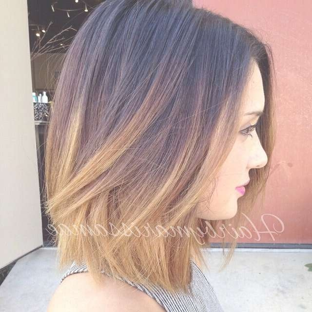 Dark To Blonde Ombre Bob Hairstyle For Thick Hair – Pretty Designs Intended For Bob Haircut Colors (View 12 of 15)
