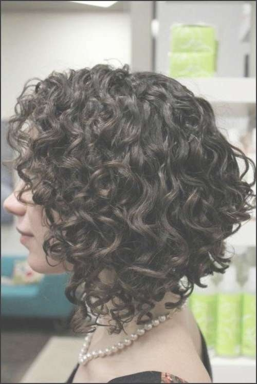 Get An Inverted Bob Haircut For Curly Hair Throughout Inverted Bob Haircuts For Curly Hair (View 10 of 15)