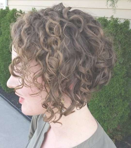 Get An Inverted Bob Haircut For Curly Hair Within Inverted Bob Haircuts For Curly Hair (View 12 of 15)