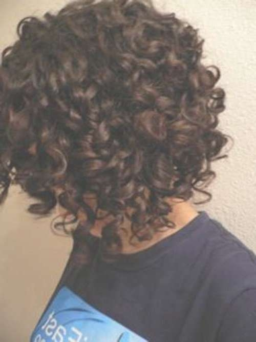 Image Gallery of Bob Hairstyles For Naturally Curly Hair (View 14 of ...