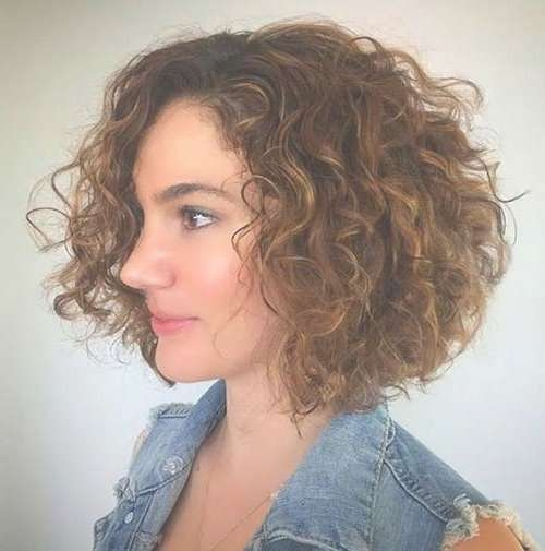 Naturally Curly Hairstyles & Bob Haircuts | Bob Hairstyles 2017 Throughout Natural Curly Bob Hairstyles (View 5 of 15)