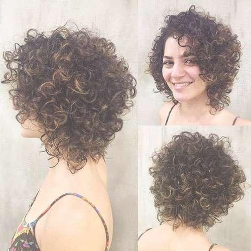 Perfect Bob Haircuts For Curly Hair | Bob Hairstyles 2017 – Short With Layered Bob Haircuts For Curly Hair (View 8 of 15)