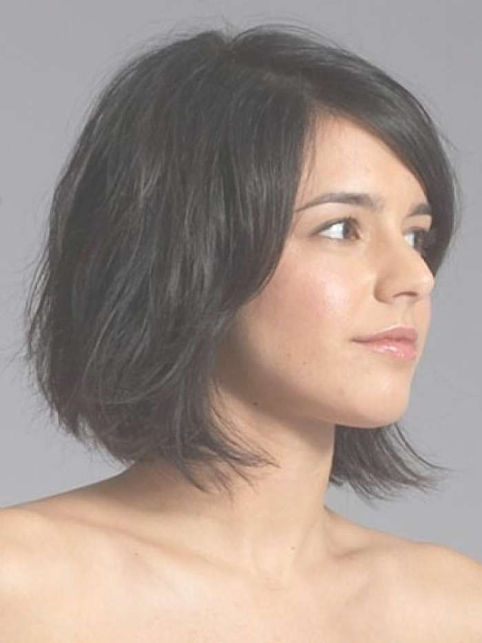 Pictures Of Bob Hairstyles For Thick Hair 2013 With Regard To Thick Bob Hairstyles (View 10 of 15)
