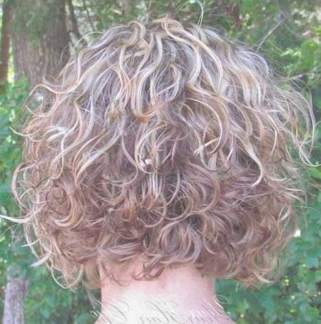 View Gallery of Stacked Bob Haircuts For Curly Hair (Showing 3 of 15 ...
