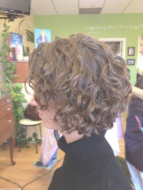 Short Curly Hairstyles For Women | Short Hairstyles 2016 – 2017 In Inverted Bob Haircuts For Curly Hair (View 15 of 15)