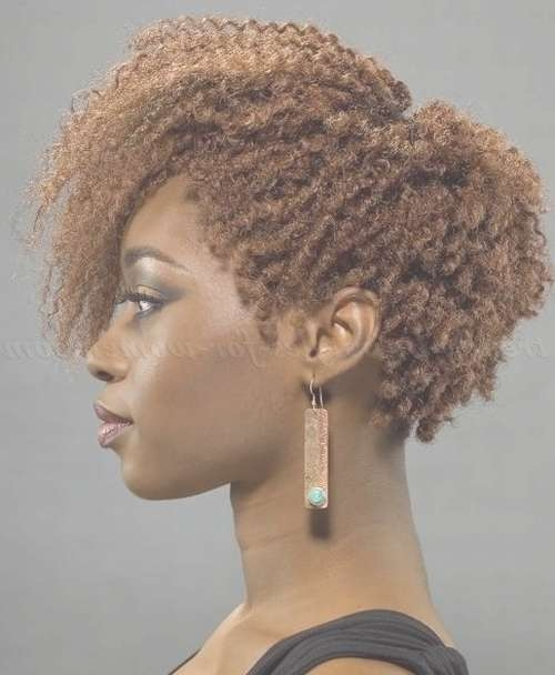 Short Hairstyles For Natural Curly Hair – Afro Braid Bob Hairstyle Intended For Bob Hairstyles For Naturally Curly Hair (View 15 of 15)