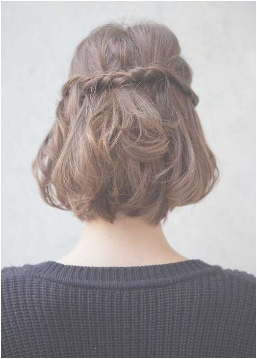 10 Half Up Braid Hairstyles Ideas – Popular Haircuts For Current Half Short Half Medium Haircuts (View 13 of 25)
