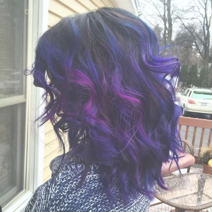 1459 Best Hair Images On Pinterest | Hairstyle Ideas, Hair Ideas Pertaining To Latest Purple And Black Medium Hairstyles (View 1 of 15)