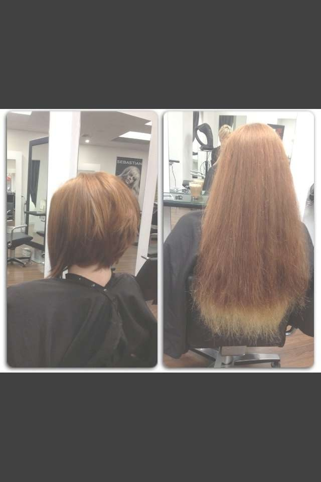 25 Best Hairstylesamberd @ Subehair Images On Pinterest Inside Bob Haircuts Makeover (View 10 of 25)