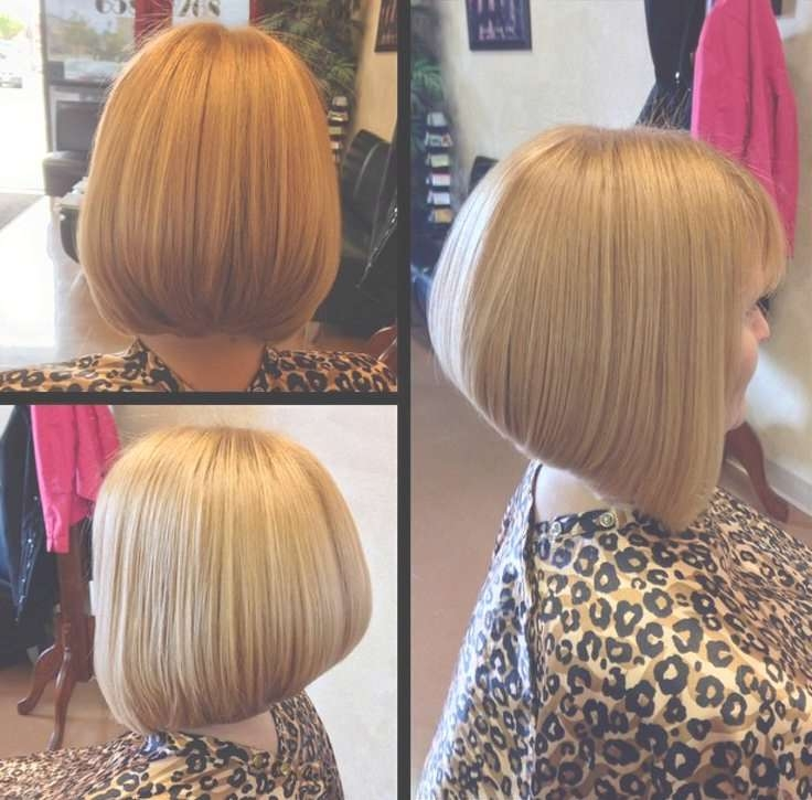 679 Best Bob Hairstyles Images On Pinterest | Bob Cuts, Bobs And With Regard To Bob Haircuts Makeover (View 22 of 25)