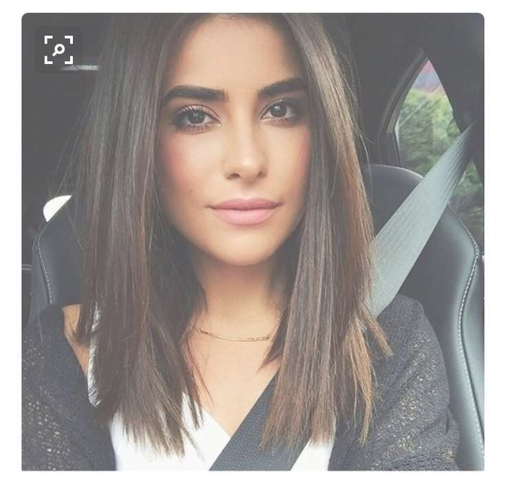 Attractive Best Haircut For Medium Hair Pertaining To Best And Newest Blunt Cut Medium Hairstyles (View 25 of 25)