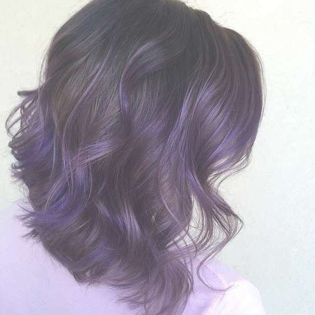 Best 25+ Dark Purple Highlights Ideas On Pinterest | Dark Brown Pertaining To Most Up To Date Purple And Black Medium Hairstyles (View 6 of 15)