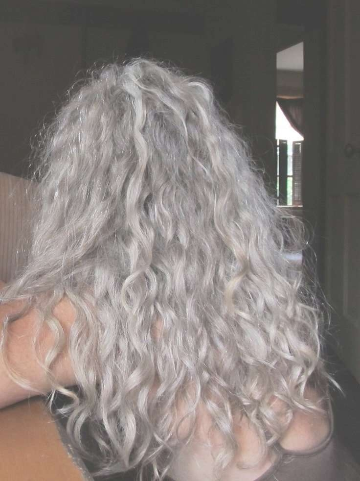 Best 25+ Grey Curly Hair Ideas On Pinterest | Why Grey Hair Is With Most Recently Medium Haircuts For Gray Hair (View 20 of 25)
