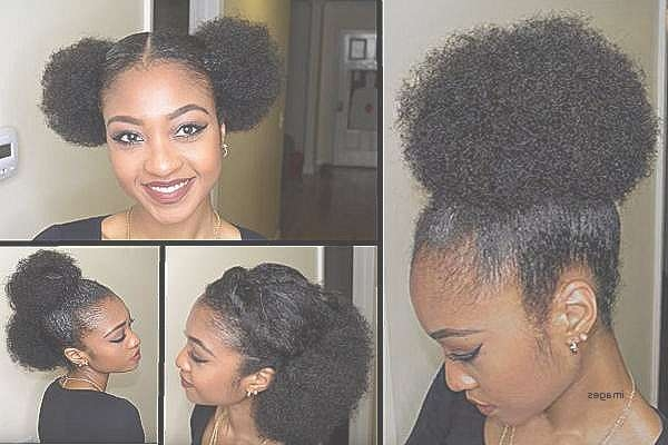 Best Of Quick Hairstyles For Black Natural Hair : Northaltaventures Inside Most Popular 4C Medium Hairstyles (View 6 of 15)