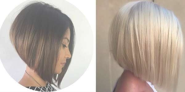 Gorgeous Graduated Bob Haircuts! With Regard To Graduated Bob Haircuts (View 16 of 25)