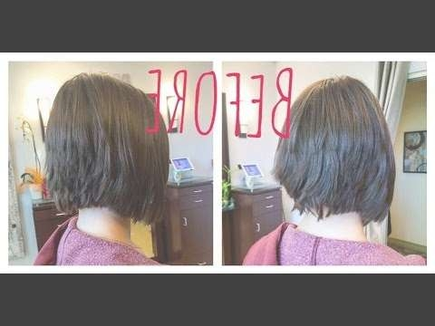 Graduated Bob Haircut Before And After Hair Makeover – Youtube Pertaining To Bob Haircuts Makeover (View 11 of 25)