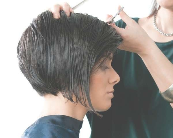 Inverted Bob Haircut – Inverted Bob Hairstyles With Regard To Indian Bob Haircuts (View 8 of 25)