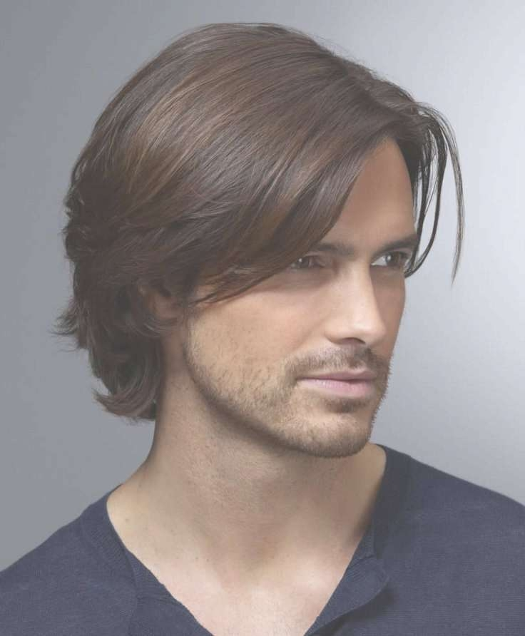 Medium Length Hairstyles For Men With Thin Hair 2017 Within Newest Medium Hairstyles Covering Ears (View 7 of 15)