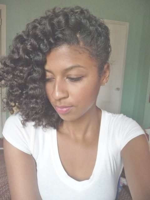Twist Hairstyles For Natural Hair   Twist Braided Styles For 2018 Medium Hairstyles For Black People (View 8 of 25)