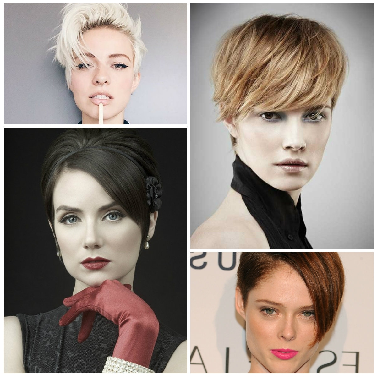 2017 Cool Pixie Haircuts For Oval Faces   Hairstyles 2018 New In Recent Pixie Hairstyles For Oval Face (View 14 of 15)