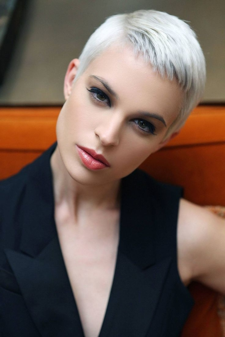 Showing Photos Of Short Pixie Hairstyles For Gray Hair View 8 Of 15