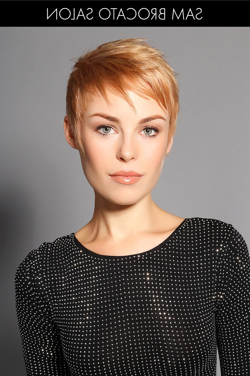 30 New And Exciting Hair Colors For Winter   Hair Color Love Pertaining To Recent Modified Pixie Hairstyles (View 13 of 15)