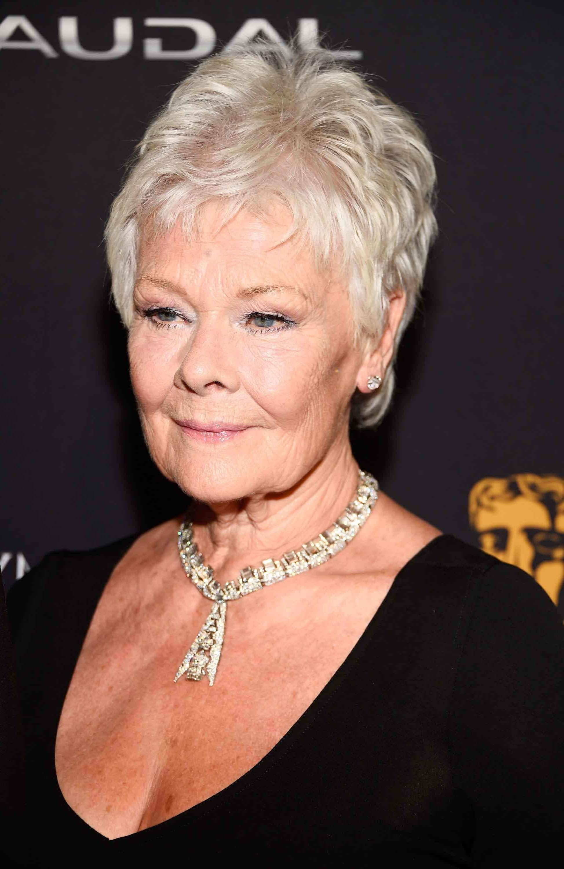 Displaying Gallery of Judi Dench Pixie Hairstyles (View 3 of 15 Photos)