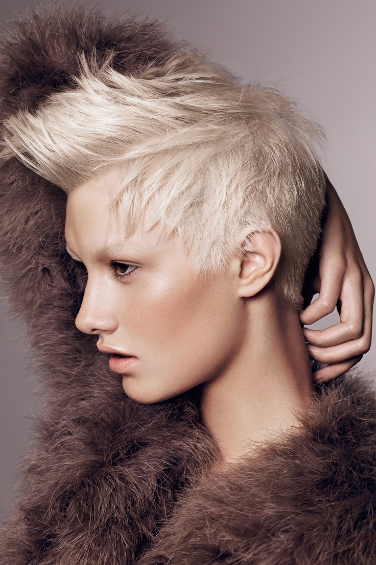 667 Best Short Cuts Images On Pinterest | Hair Cut, Hairstyle In Most Recent Punk Rock Pixie Hairstyles (View 5 of 15)