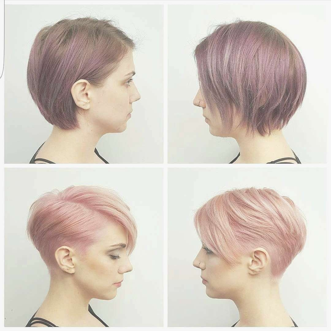 Bob Hairstyles : Top Bob Pixie Hairstyles View In 2018 Hairstyles Throughout Most Current Bob And Pixie Hairstyles (View 12 of 16)