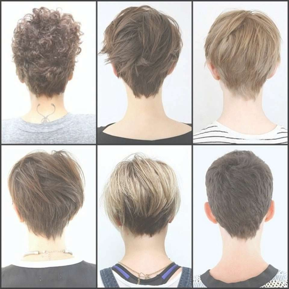 Featured Photo of Back Views Of Pixie Hairstyles
