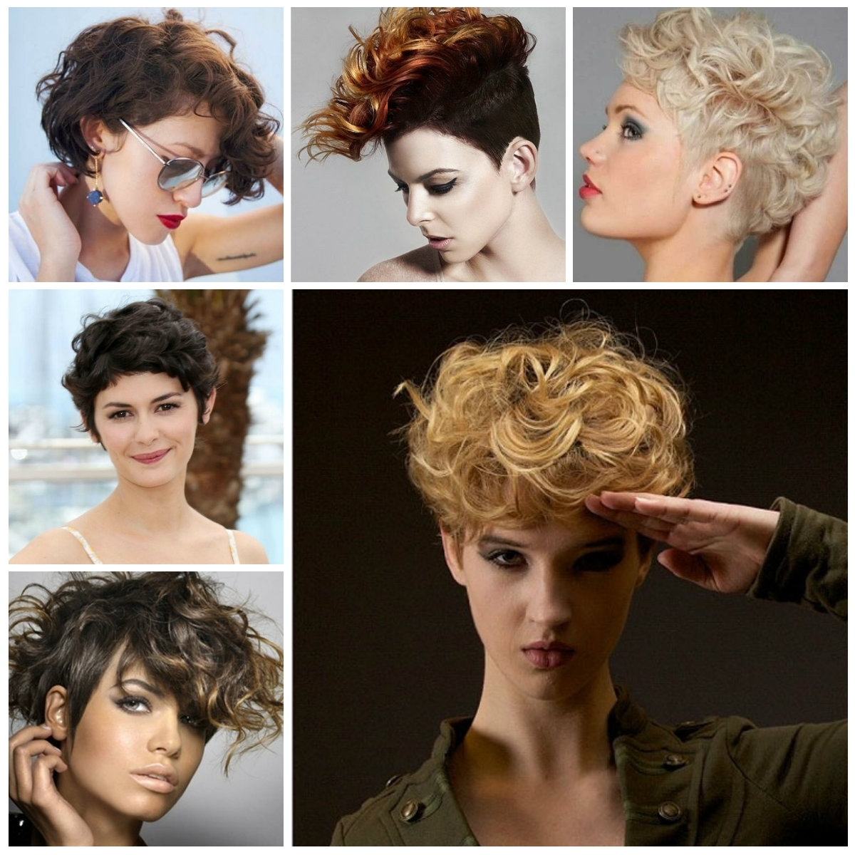 Explore Photos Of Short Curly Pixie Hairstyles Showing 14 Of 15 Photos