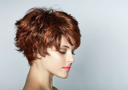 Overwhelming Short Haircuts For Curly Hair | Medium Hair Styles with Recent Short Shaggy Curly Hairstyles
