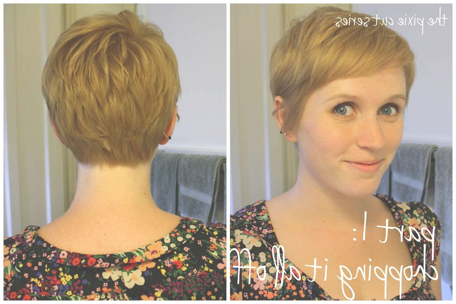 Pixie Cut Back View – Hairstyles Ideas With 2018 Back View Of Pixie Hairstyles (View 13 of 15)