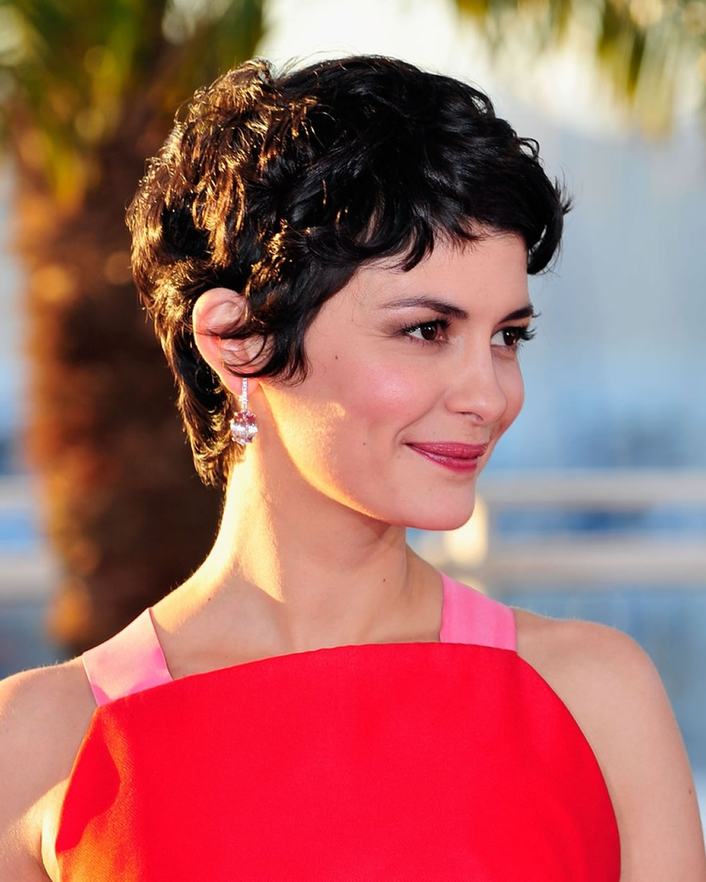 Pixie Haircuts For 2018 & Pixie Short Hairstyle Ideas With Recent Pixie Hairstyles For Curly Hair (View 9 of 15)