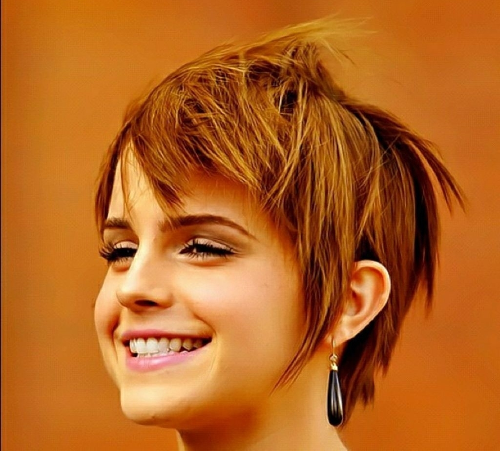 Pixie Hairstyles For Round Faces Womens Pixie Haircuts For Your For Most Recently Pixie Hairstyles For Round Face Shape (View 10 of 15)