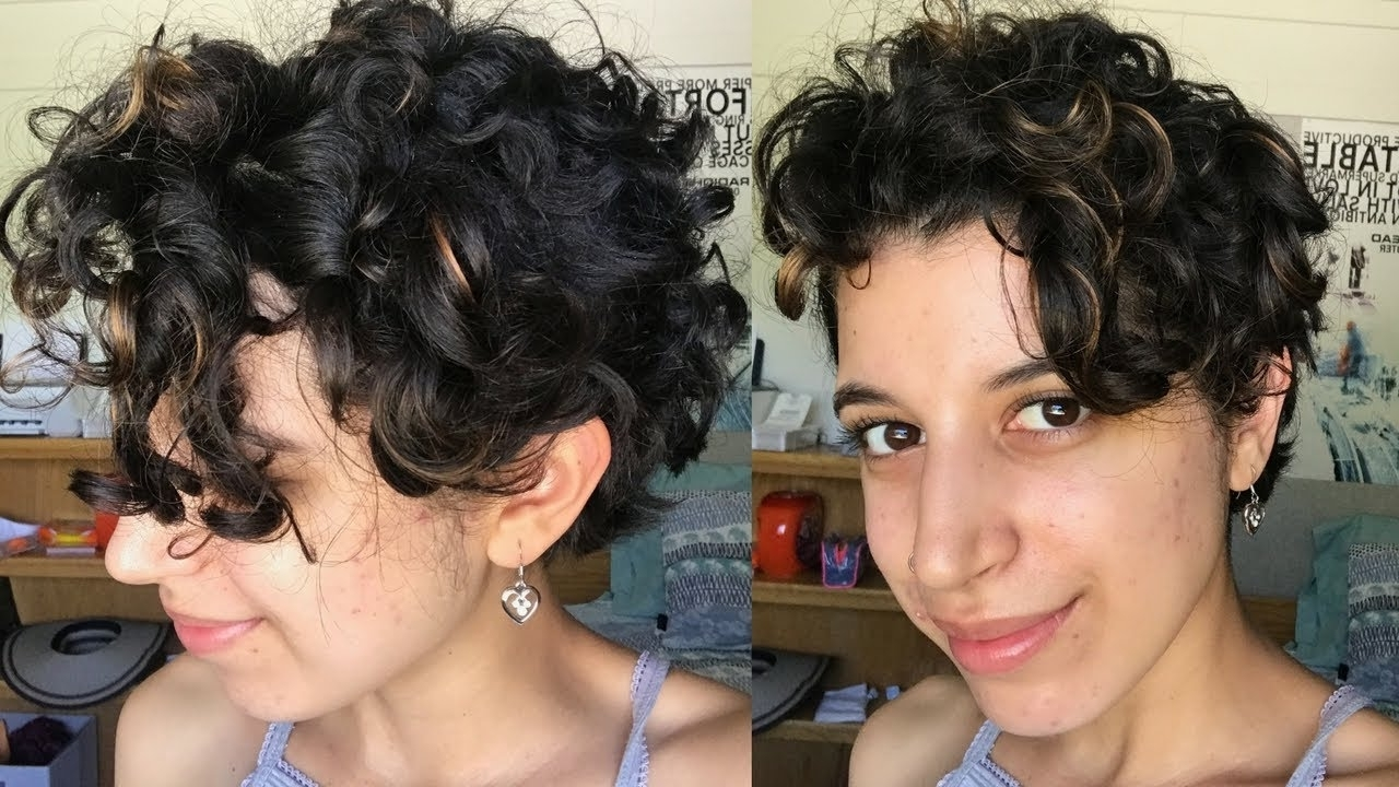 Short Curly Hair Routine | Long Pixie Cut – Youtube Regarding Best And Newest Long Pixie Hairstyles For Curly Hair (View 6 of 15)