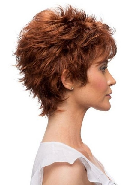 Image Gallery Of Shaggy Hairstyles For Over 60 View 9 Of 15 Photos