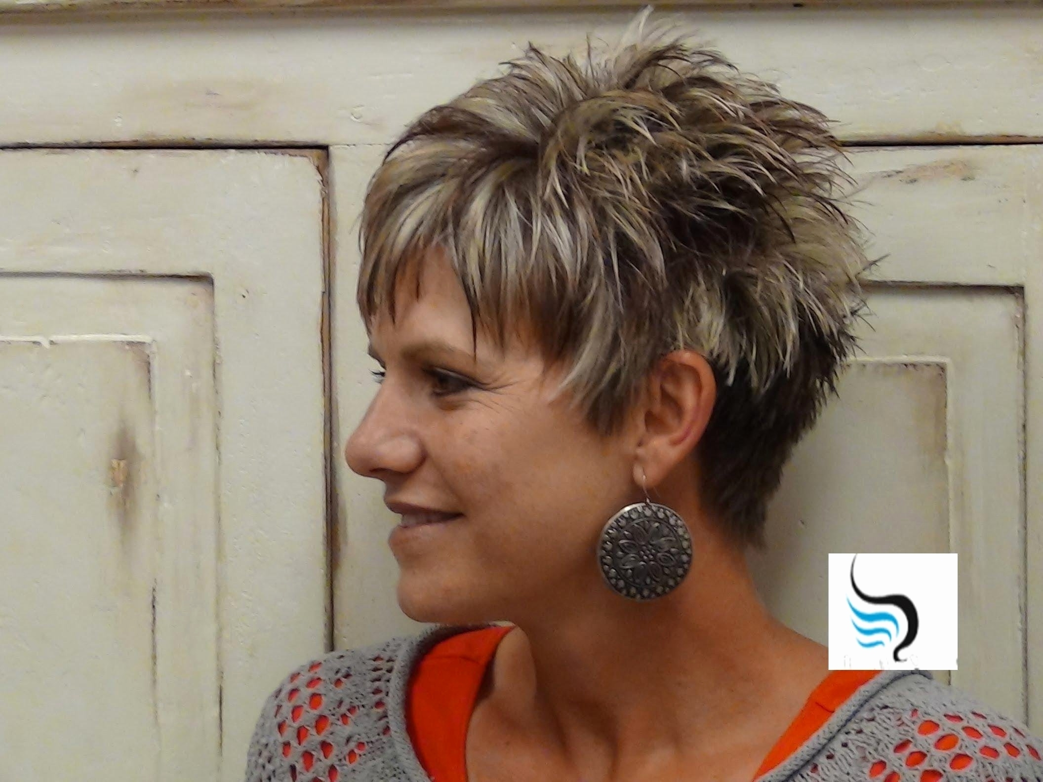 Explore Photos of Pixie Hairstyles For Over 60 (Showing 7 of 15 Photos)