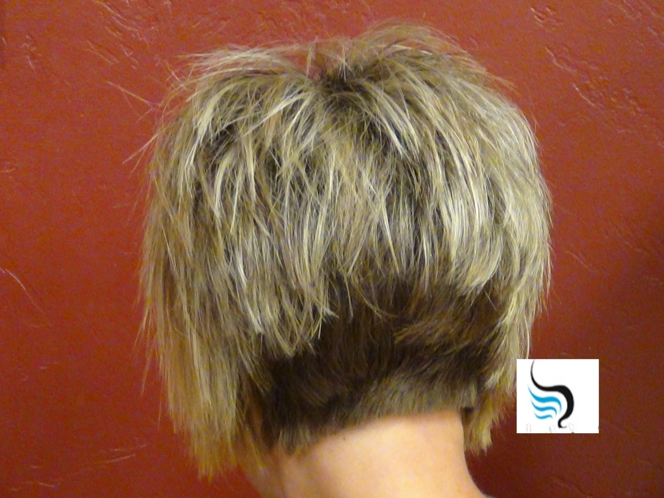 Short Stacked And Short Straight Hairstyles (Our Most Liked Intended For Recent Pixie Hairstyles With Stacked Back (View 3 of 15)