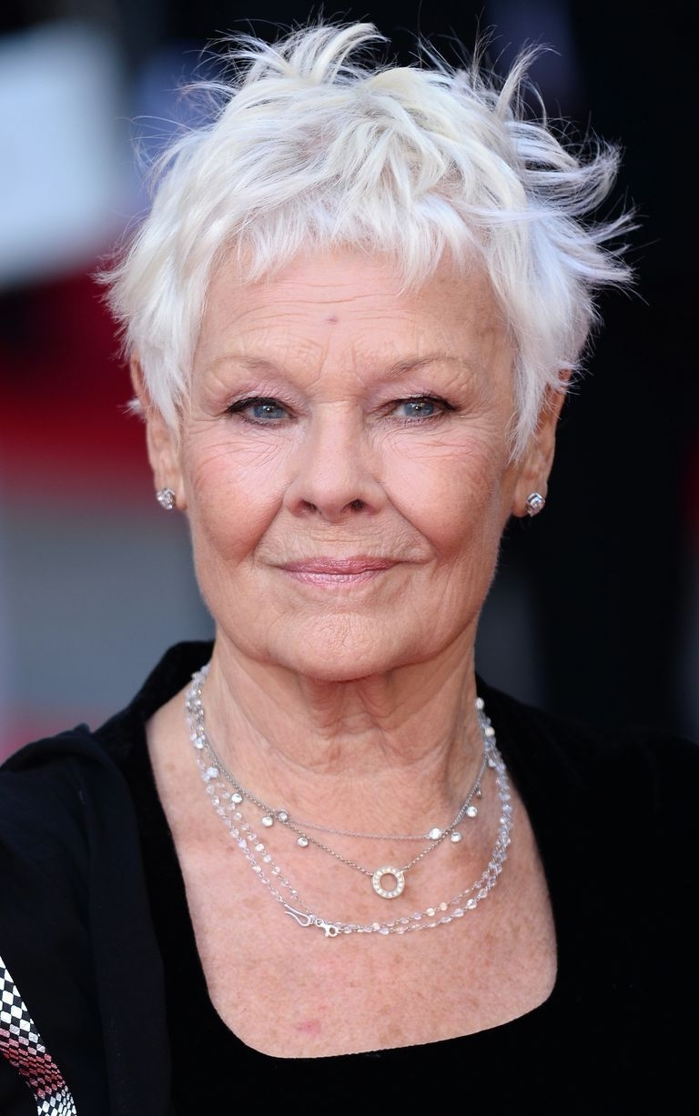 Judi Dench Hairstyle 2018 Hairstyles Wordplaysalon