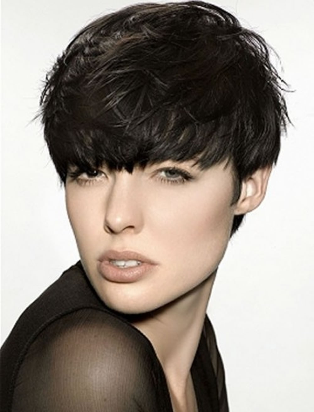Trend Pixie Haircuts For Thick Hair 2018 2019 : 28 Terrific Pixie For Most Up To Date Thick Hair Pixie Hairstyles (View 12 of 15)